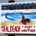 SealBeach2015_icon.jpg